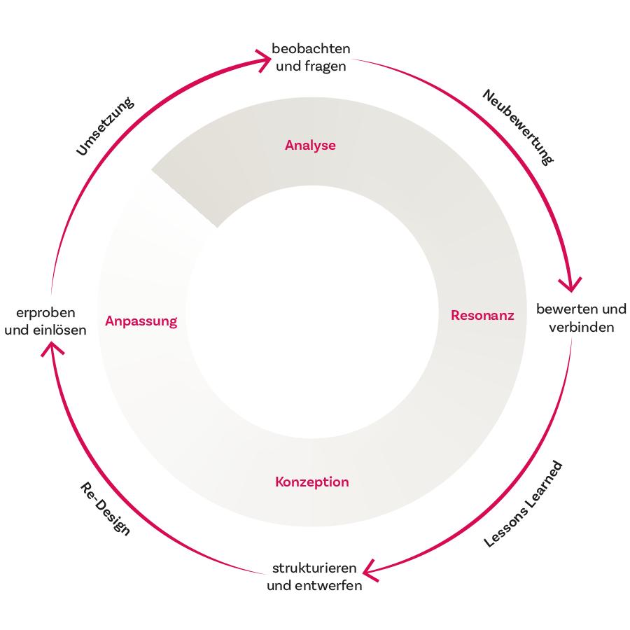 Leadership Development, Analyse, Resonanz, Konzeption, Anpassung